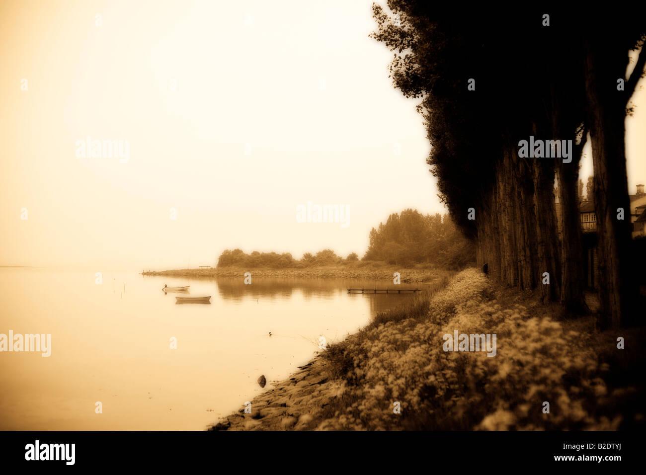 AEro-Ufer: Eine Ente schwimmt durch auf die friedliche Pappeln gesäumten Ufer des AEro. Ein nebliger Punkt Stockbild