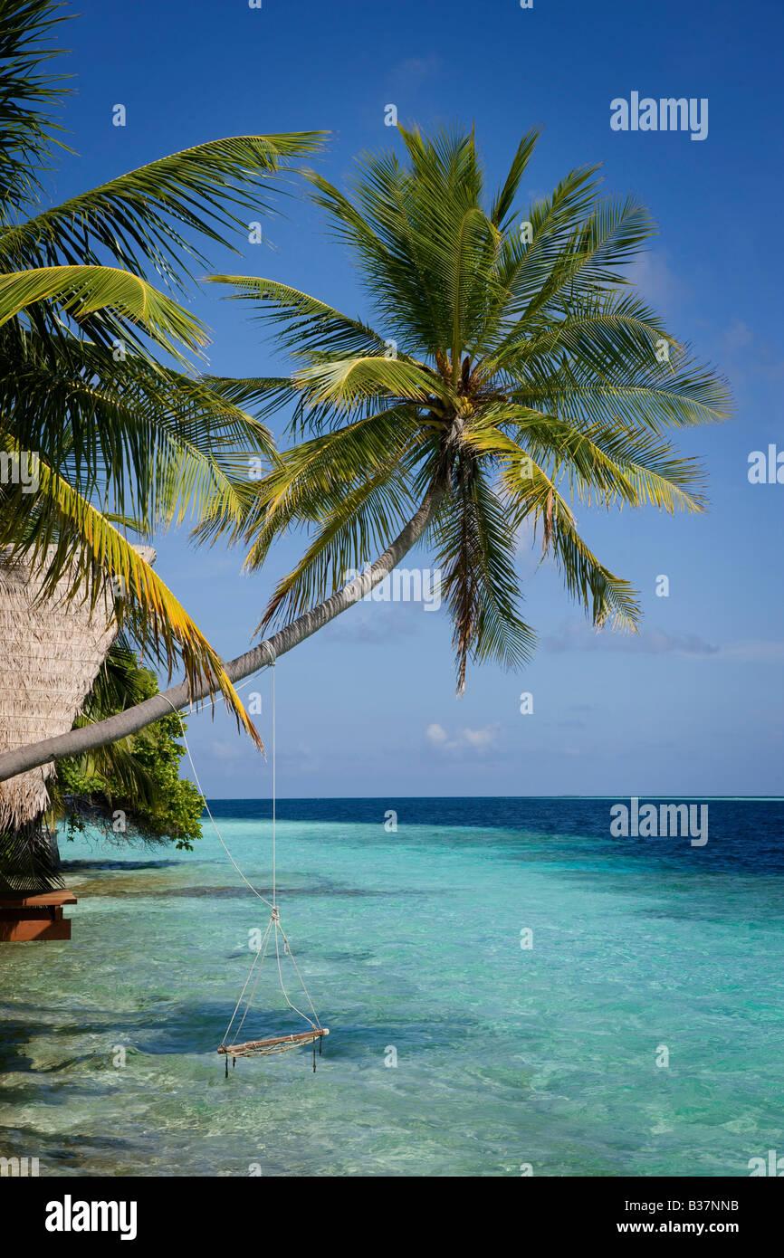 Seil Schaukel auf Süd Ari Atoll auf den Malediven in der Nähe von Indien Stockfoto