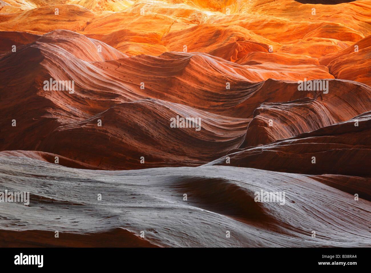 Felswand in Buckskin Gulch, Paria Canyon Wilderness Stockbild