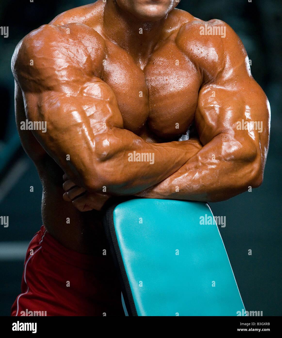 Bodybuilder Kraft Stärke Arm Bizeps Steroid Torso muskulösen Arm ...