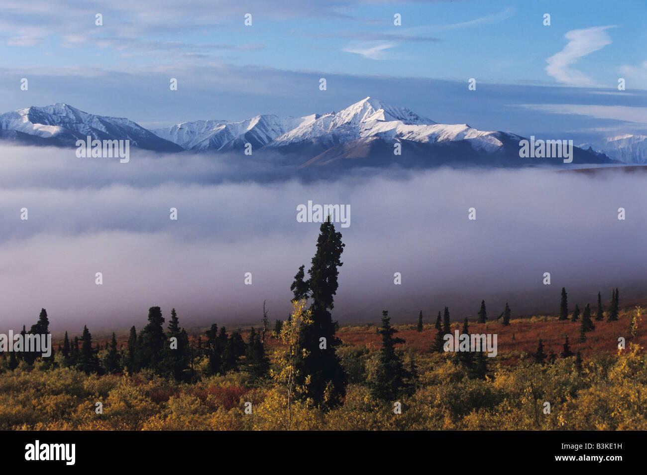 Gebirge und Nebel Alaska USA Stockbild