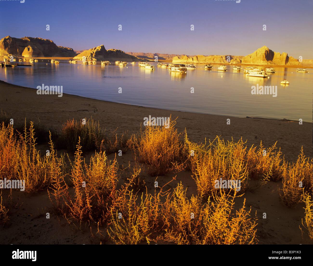 Boote an Wahweap Marina Lake Powell Utah Stockbild
