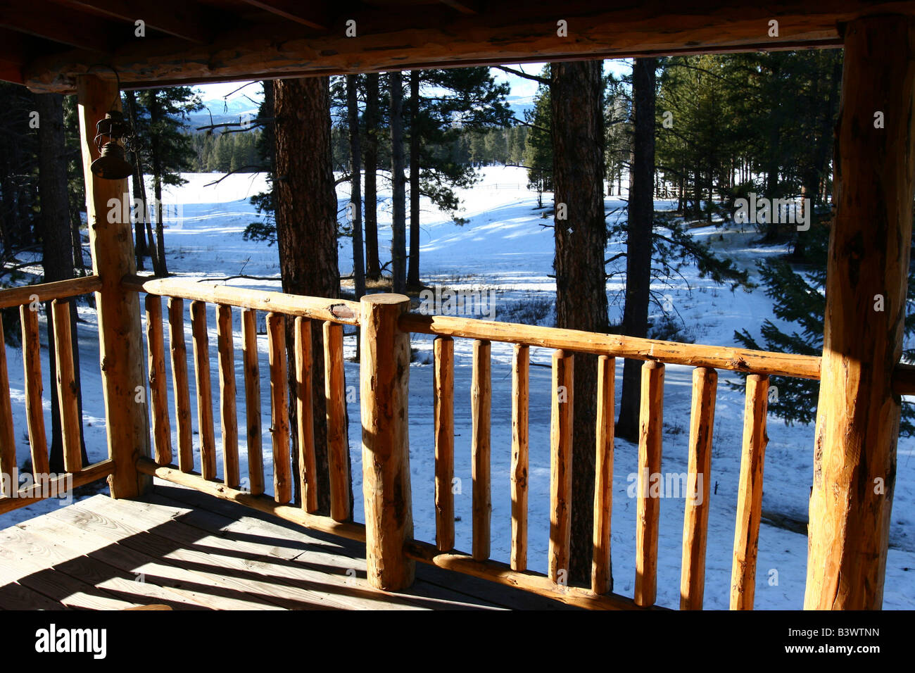 Bäume im Schnee bedeckt Feld gesehen von der Veranda der Hütte, Swan Valley, Montana, USA Stockbild
