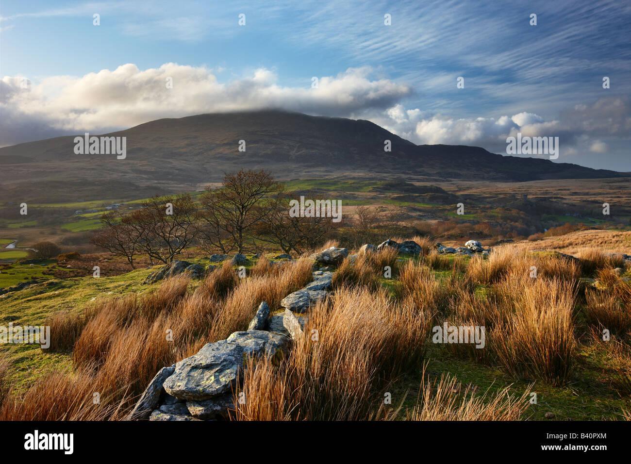 eine Steinmauer über Glyn Lledr in der Nähe von Dolwyddelan mit Moel Siabod über Snowdonia National Stockbild
