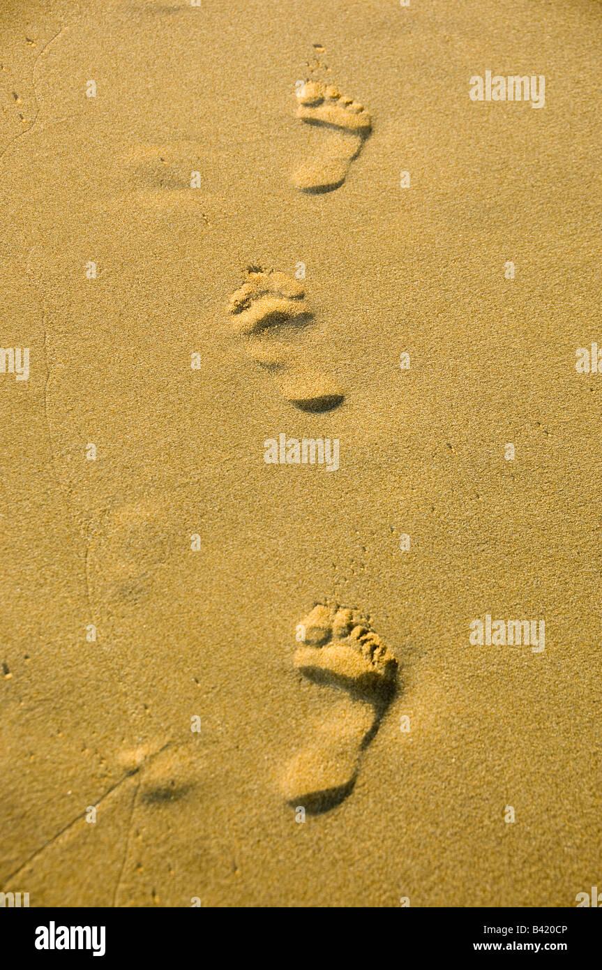 Spuren im sand Stockbild