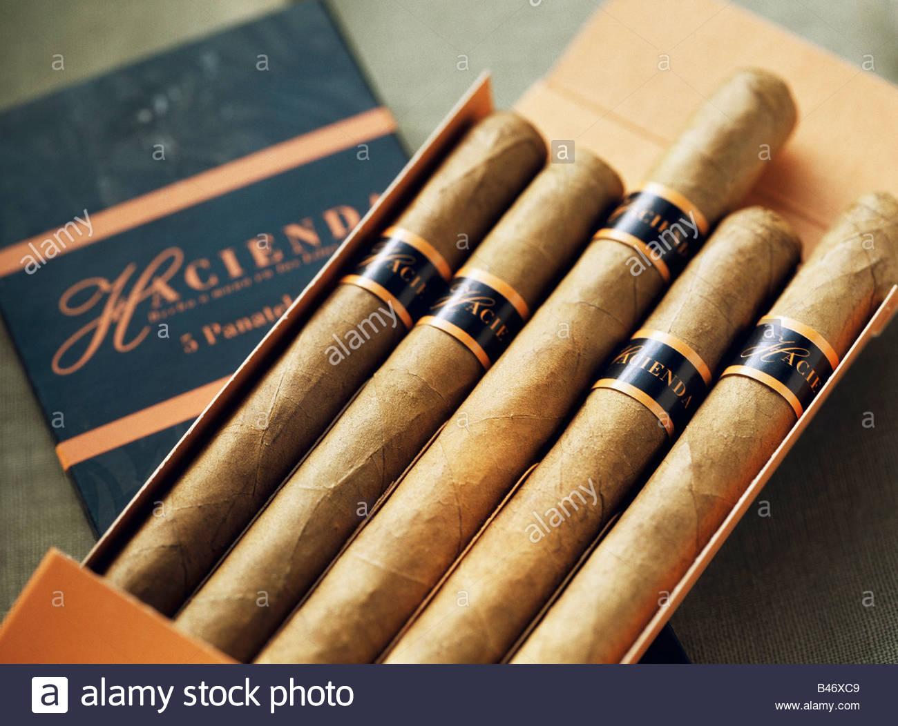 Kanarische Zigarren aus La Palma Stockbild