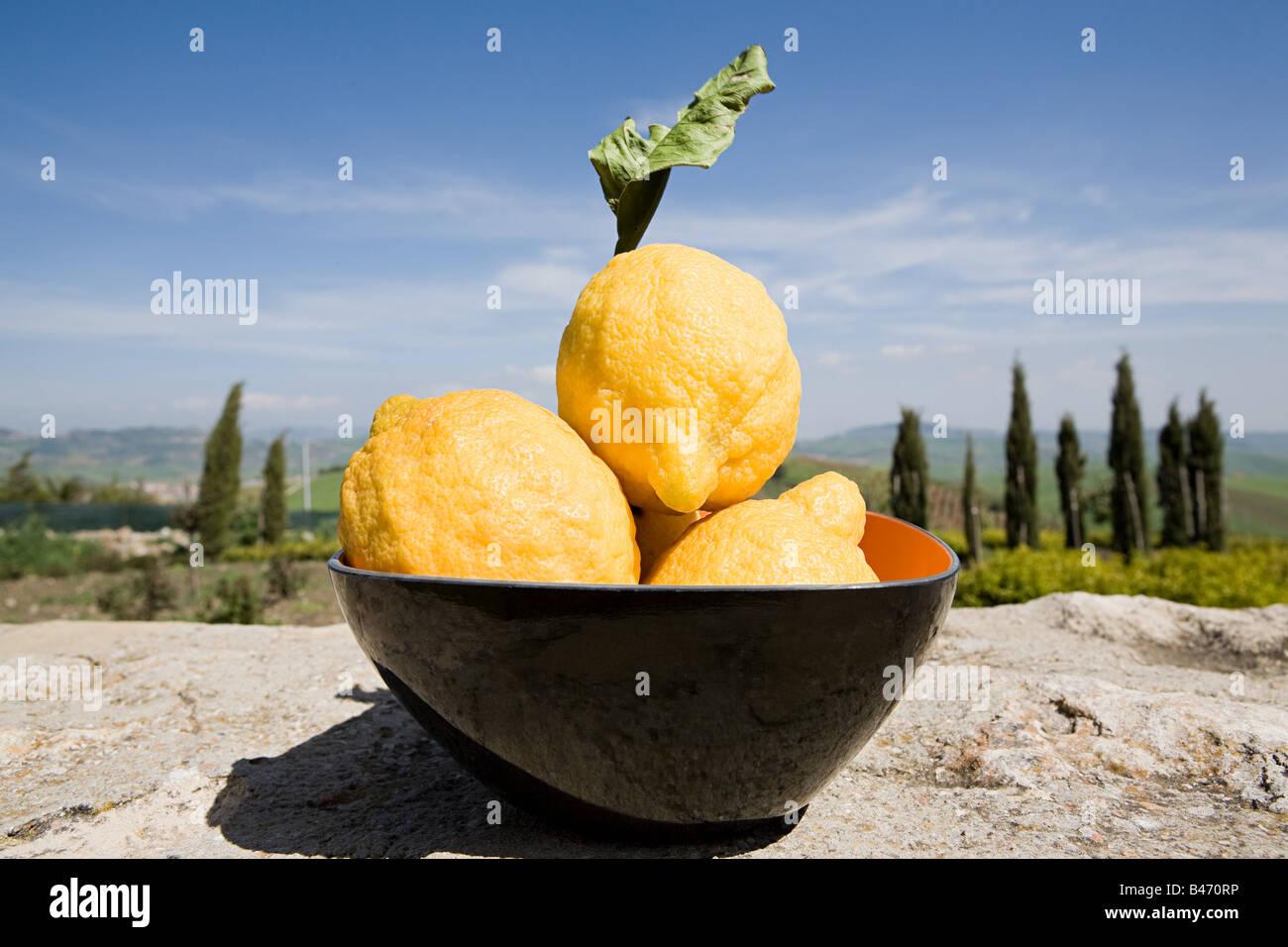 Sizilianischen Zitronen Stockbild