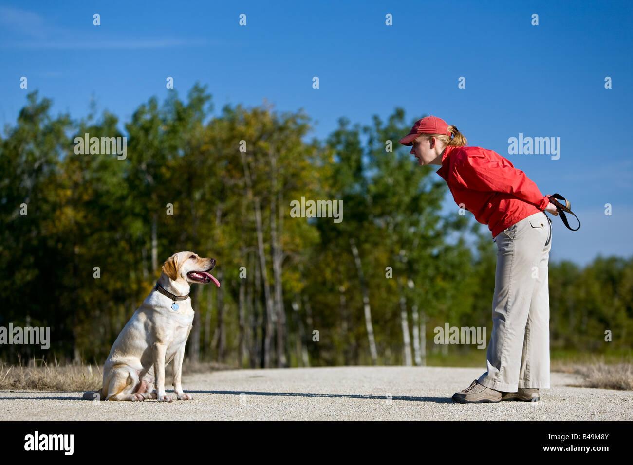 Frau Training gelbe Labrador Retriever Welpen sitzen. Stockbild