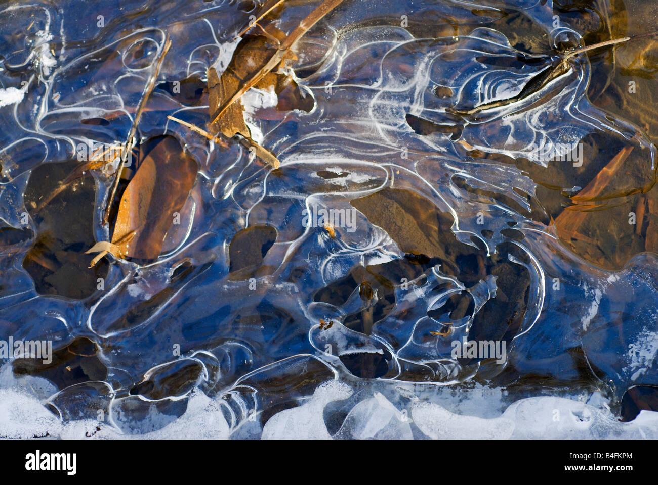 Dünnem Eis an einem Bach der Chesapeake Bay. Stockbild