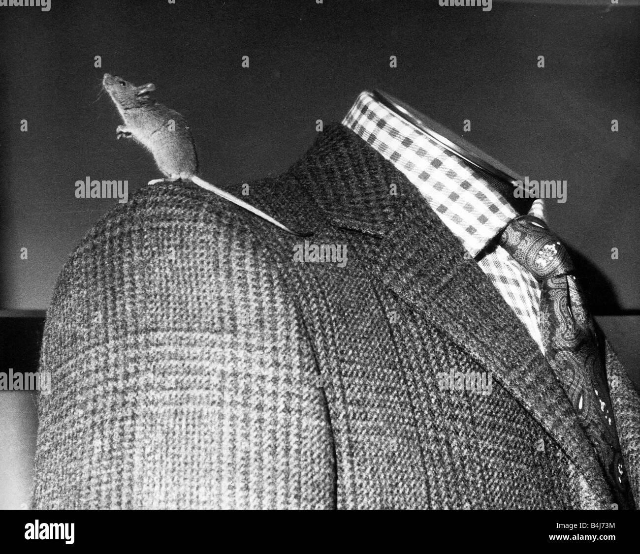Men\'s Tailors Stockfotos & Men\'s Tailors Bilder - Alamy