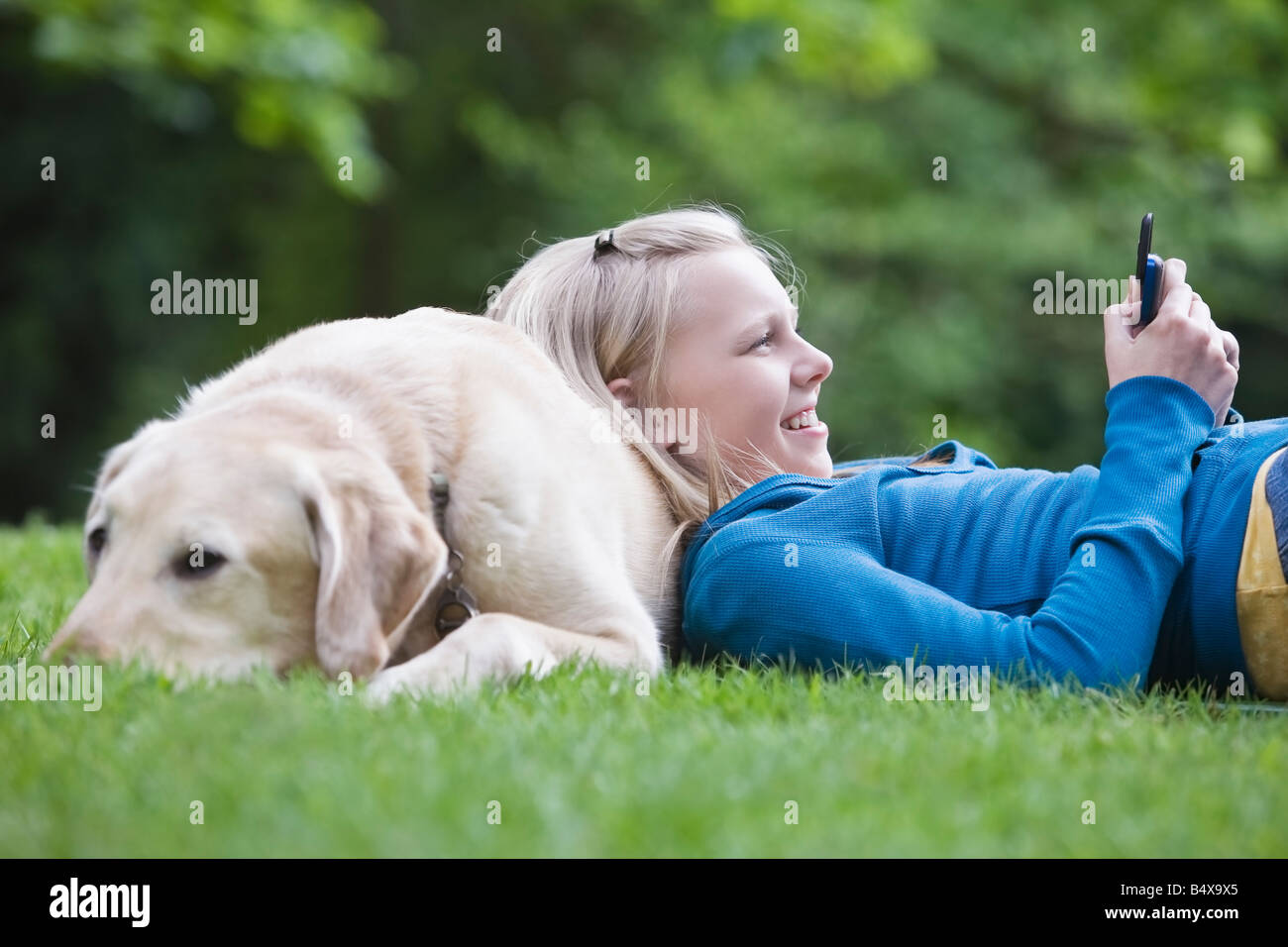 Labrador Retrie Stockfotos & Labrador Retrie Bilder - Alamy