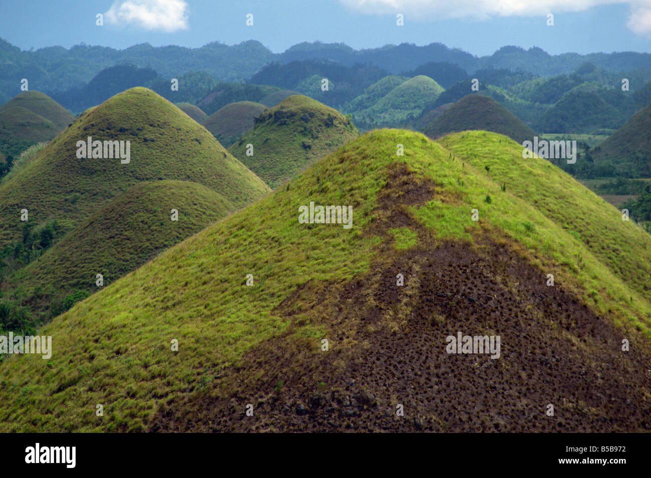 Die Chocolate Hills, eine berühmte geologische Kuriosität, mit mehr als 1000 von ihnen, auf der Insel Stockbild