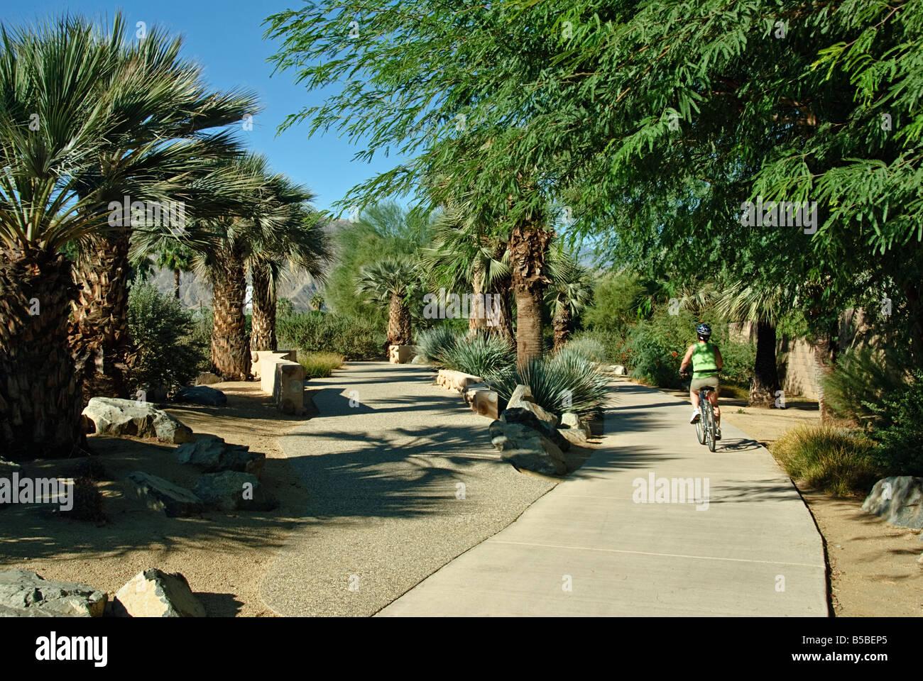 CA in der Nähe von Palm Springs Hovley Lane Fahrrad Pedesterian Weg Palm Desert Frau 40er 50er Jahre Reiten Stockbild