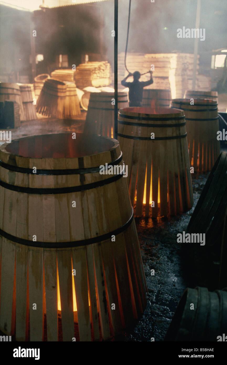 Fässer für Sherry, Jerez, Andalusien, Spanien, Europa Stockbild