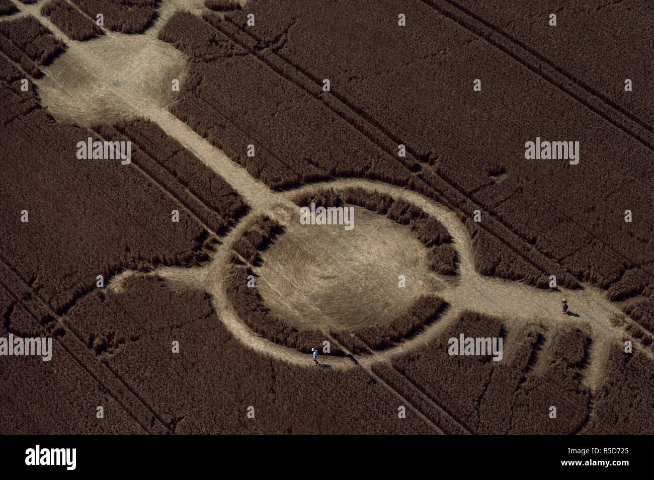 Frühes Beispiel eines Kornkreises, Avon Wiltshire Grenze, England, Europa Stockbild