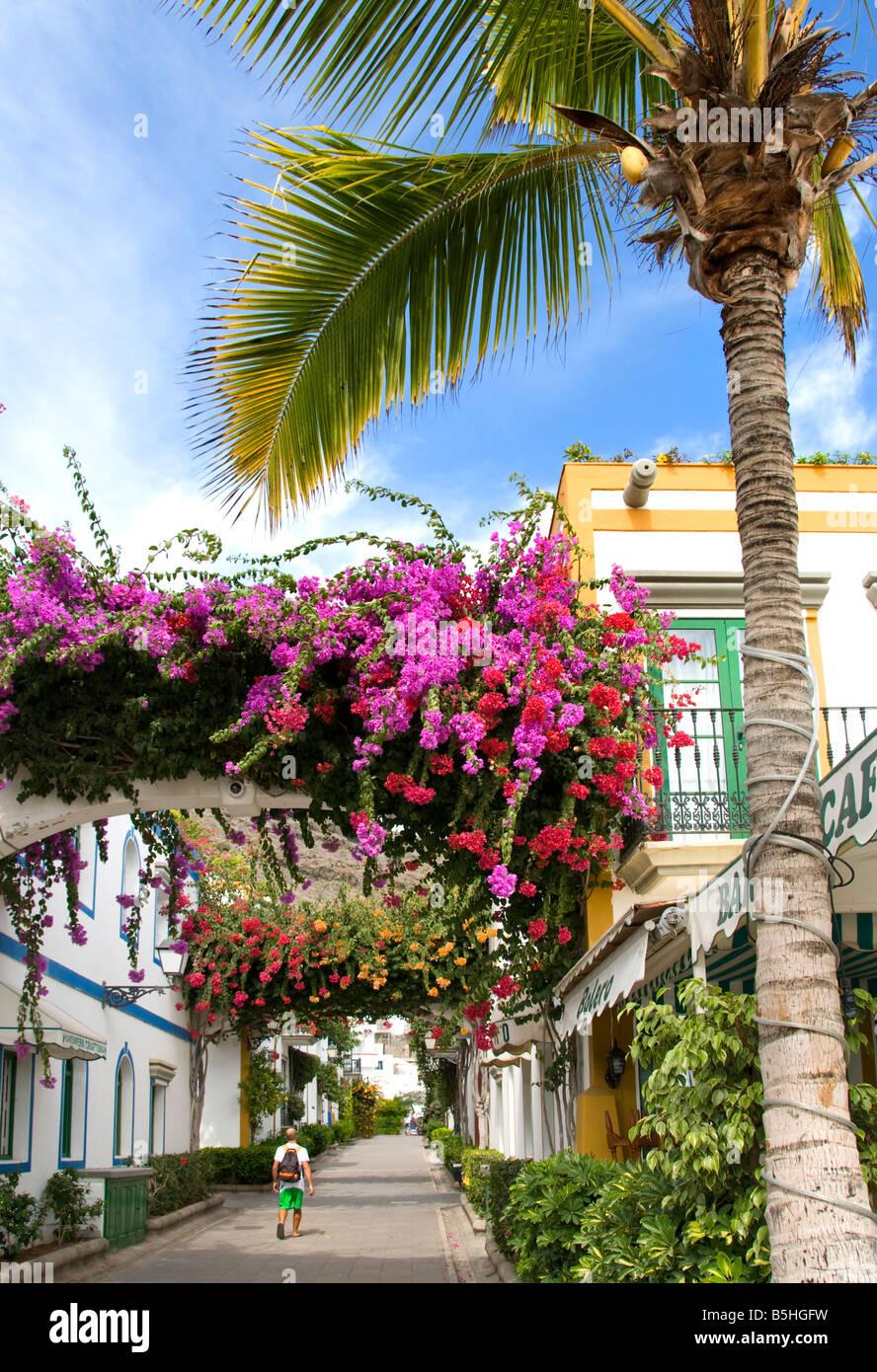 Gehweg mit Bougainvillea und einzigen männlichen Touristen im Luxus-Resort von Puerto de Mogan Gran Canaria Stockbild