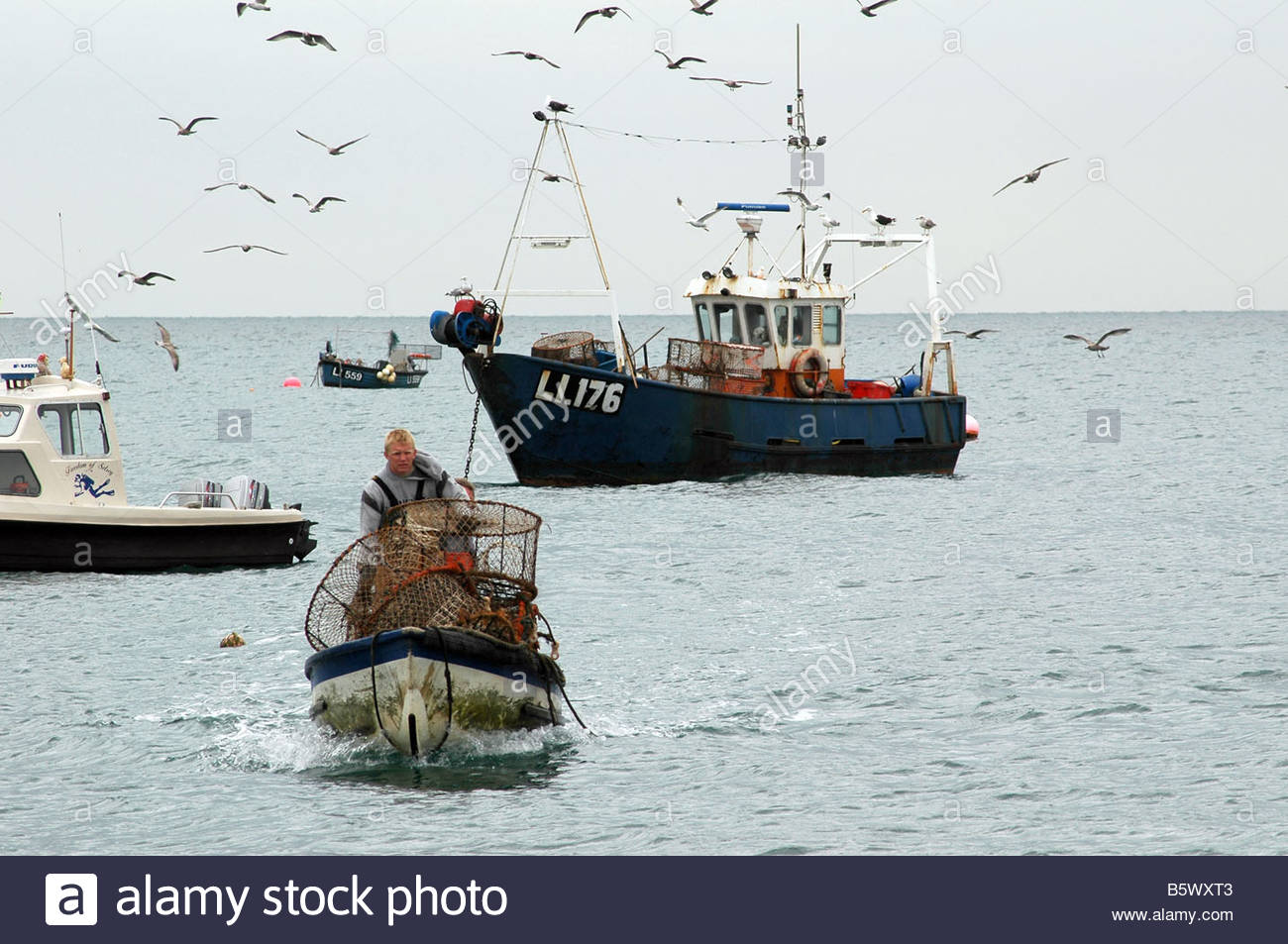 Angelboot/Fischerboot umgeben von Möwen Stockfoto