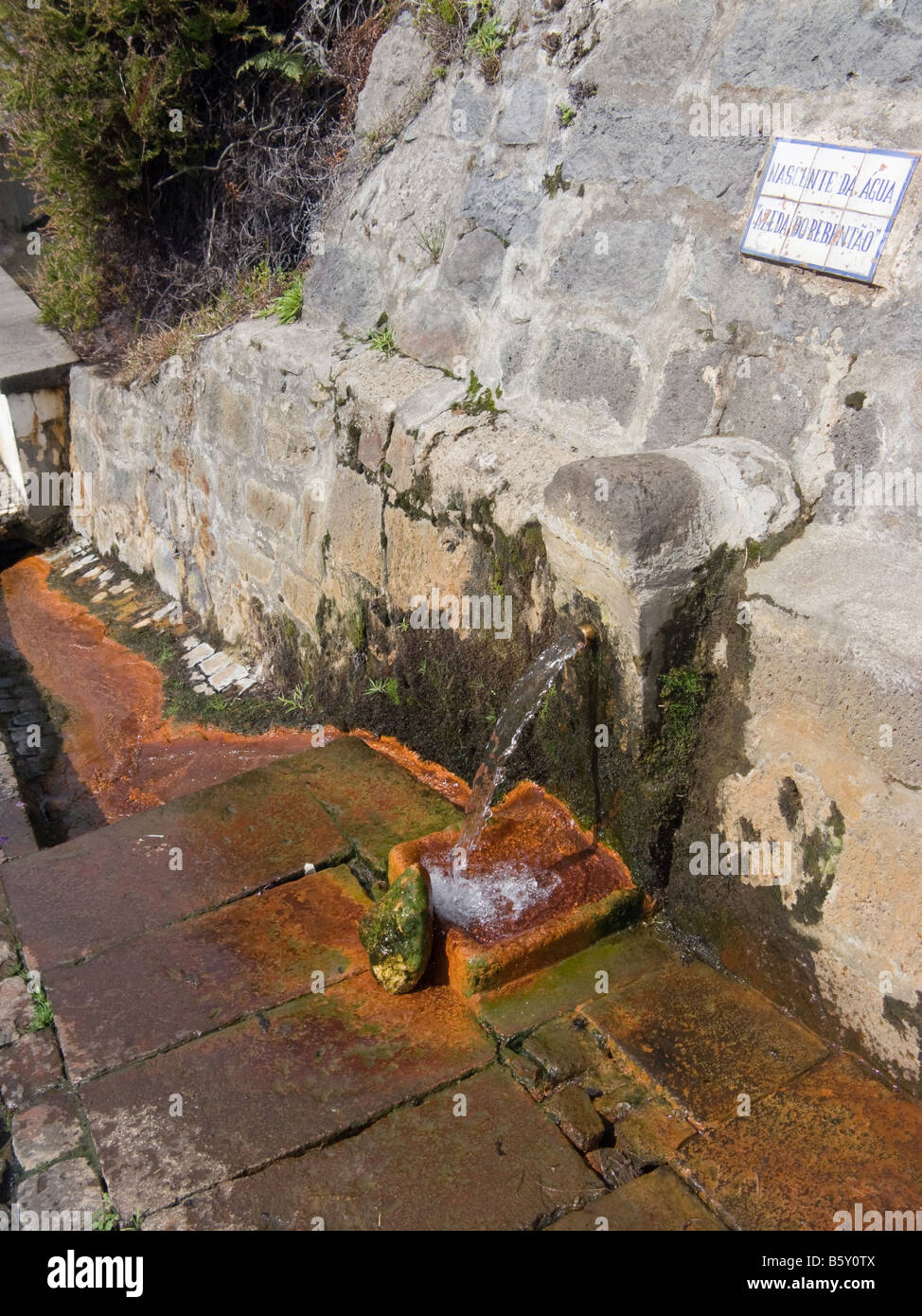Frühling mit natürlich kohlensäurehaltigem Mineralwasser in Furnas, São Miguel, Azoren, Portugal Stockbild