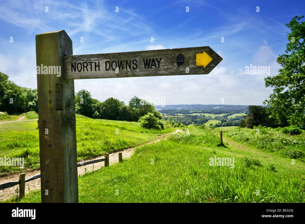 North Downs Way Fußweg Richtung Wegweiser Schild, Newlands Ecke, Surrey Hills, England, Großbritannien Stockbild