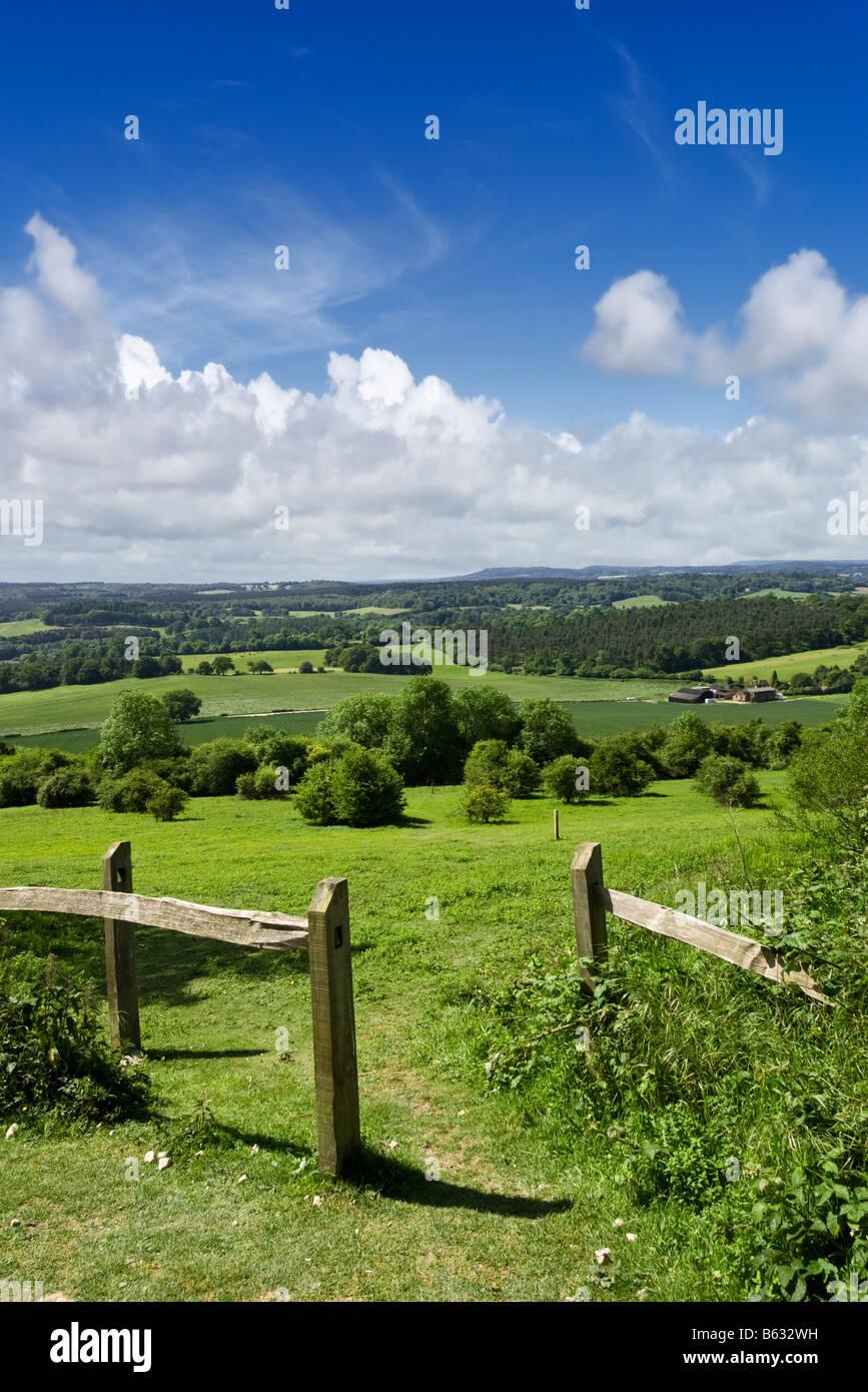 Gegen über der Surrey Sussex Weald von der North Downs Way in der Surrey Hills, England, Großbritannien Stockbild