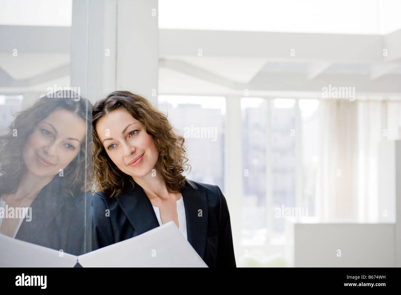 Beste Dekorative Draht Verstärkte Glasfenster Zeitgenössisch - Die ...