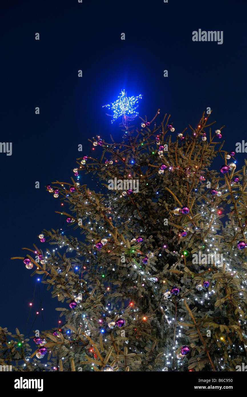 Weihnachtsbaum Sterne Stockbild