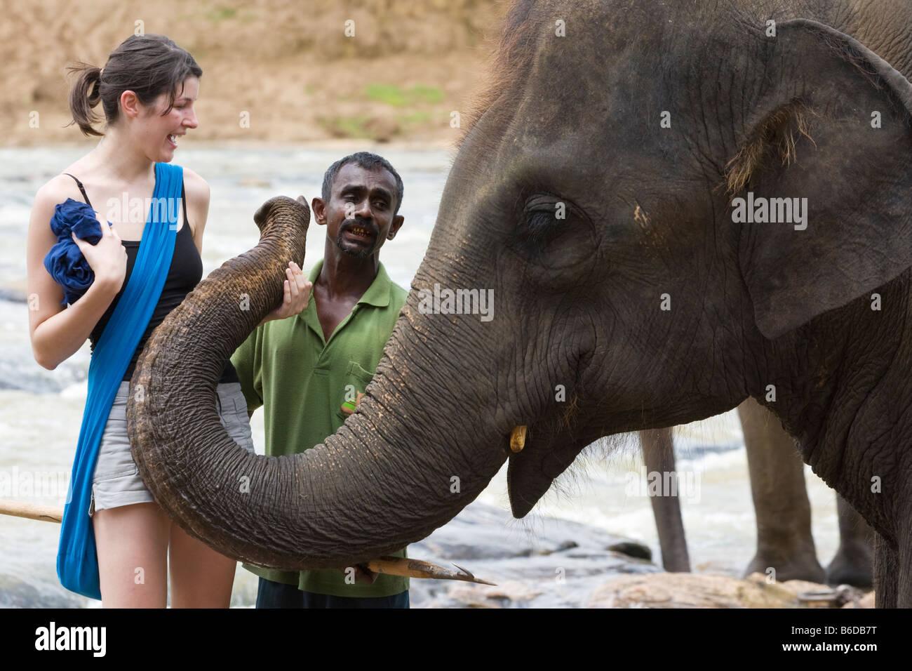 Ein Tourist posiert mit einem Elefanten auf das Pinnawela-Elefantenwaisenhaus (Sri Lanka) Stockfoto