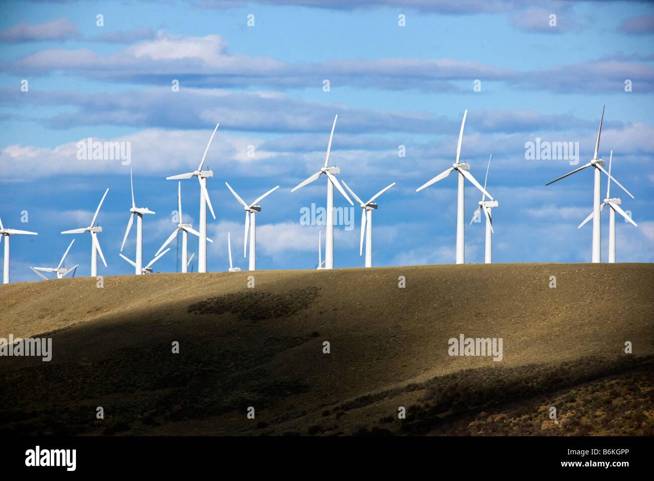 Windräder erzeugen elektrischen Strom in der Nähe von Arlington, Wyoming, USA Stockbild
