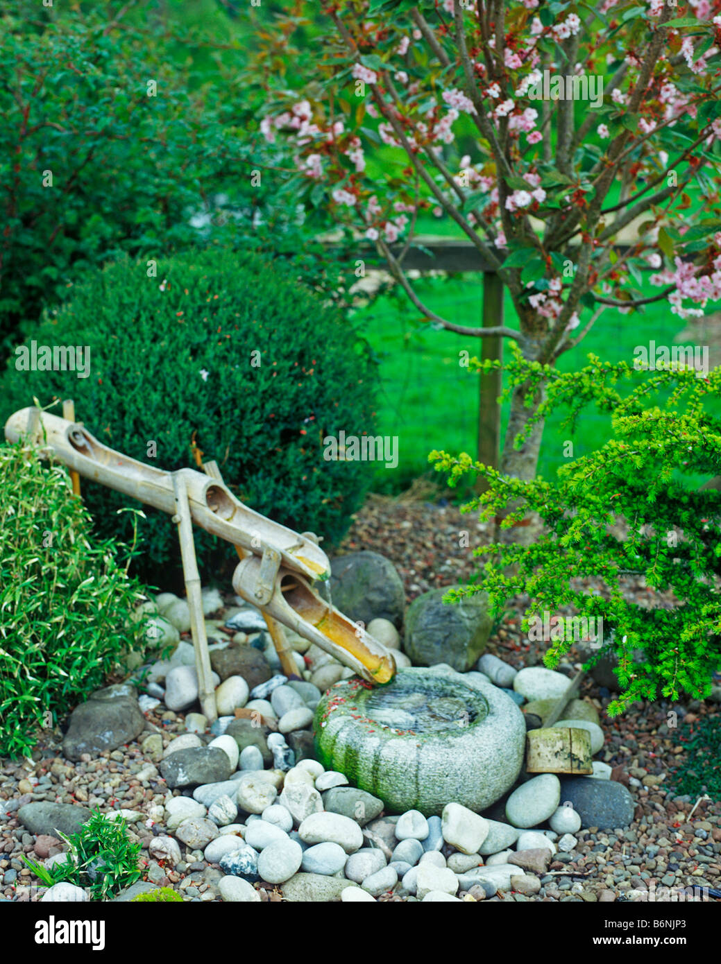 Japanischer Garten Im Sommer Mit Bambus Wasserfall Stockfoto Bild