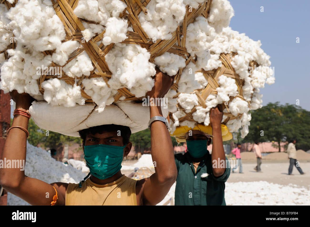 Mahima Entkörnung Fabrik für Fairtrade und Bio-Baumwolle, Arbeiter, Indore, Madhya Pradesh, Indien tragen Stockbild
