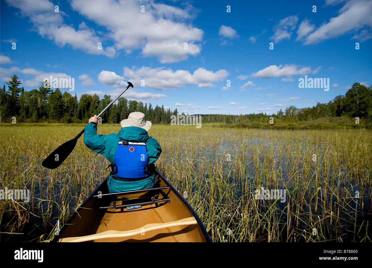 Kanu fahren, eine neue Fischerei vor Ort in der Grenze Gewässer Kanu-Bereich Wildnis im Superior National Forest Stockbild