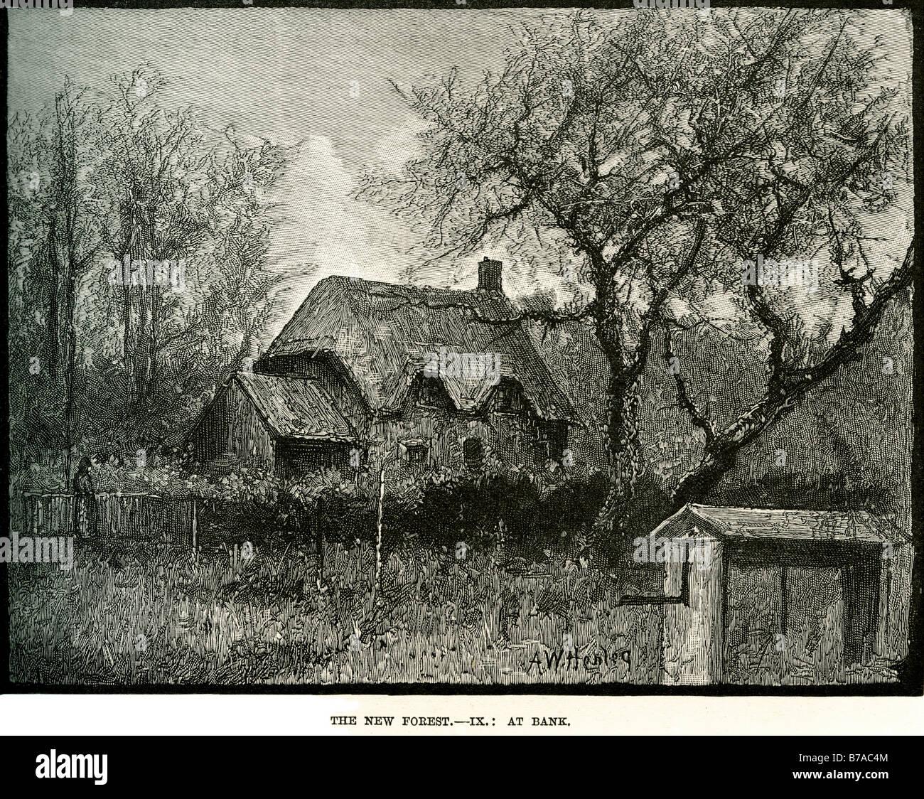 New Stroh Haus Hütte Im Wald Angedockten Zweig Baumstamm Holz Sommer Wald  Land Seite Traditionla Gebäude England Gebrochen