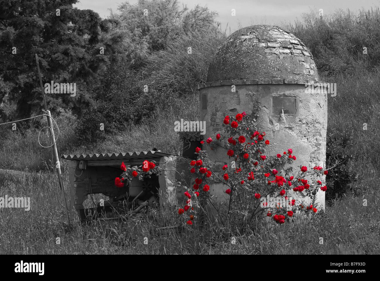 Alter Brunnen in der Toskana Italien Stockbild
