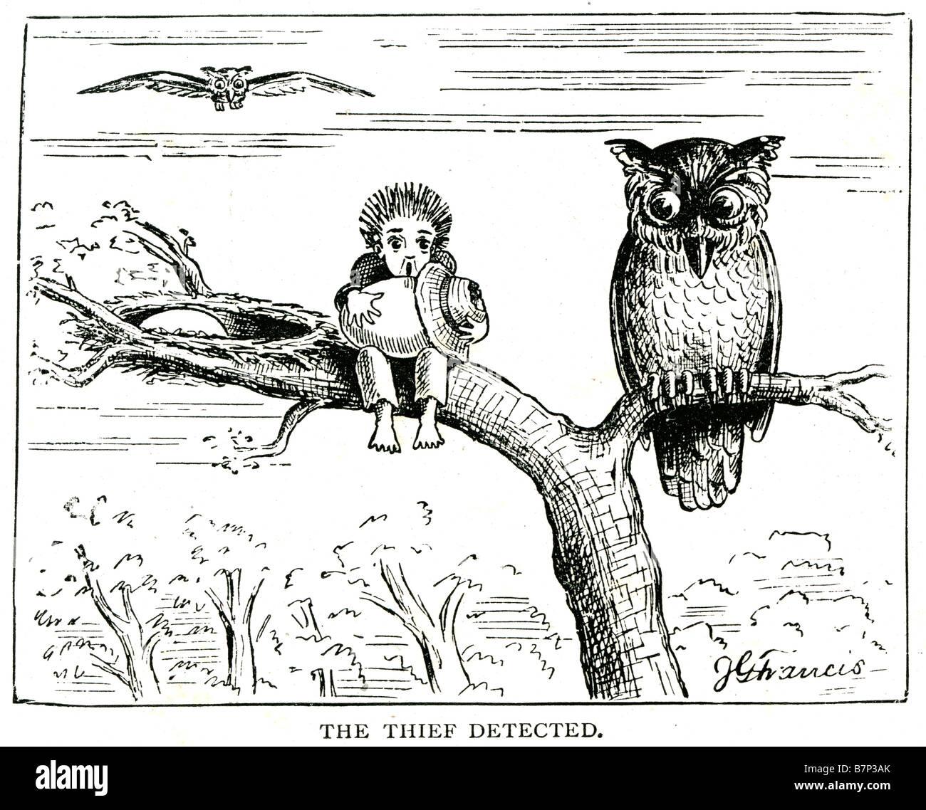 Dieb erkannt, Baum Zweig Eule junge Ei versteckt eingeklemmter genommen Hut Baum Cartoon Phantasie gefangen gestohlen Stockbild