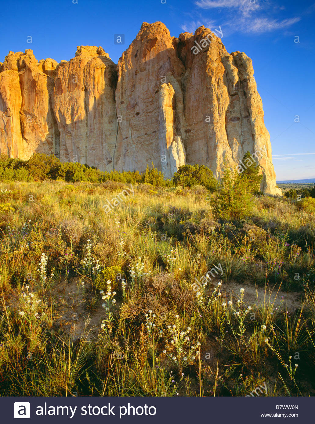 Inschrift Rock bei Sonnenaufgang El Morro National Monument New Mexico Stockbild