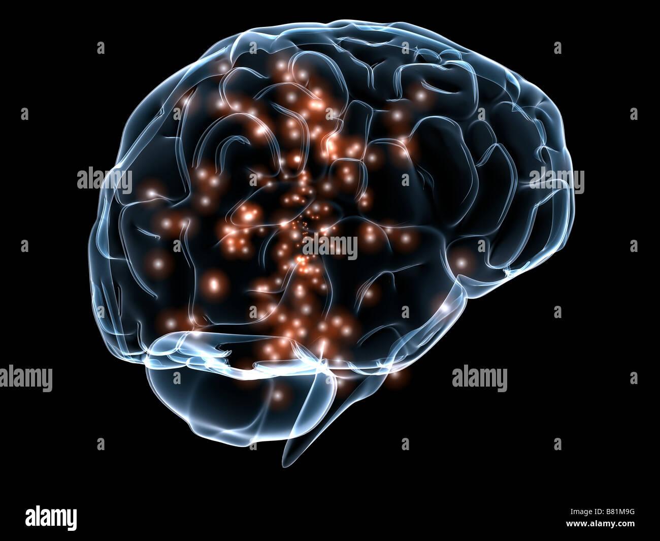 aktive Gehirn Stockbild