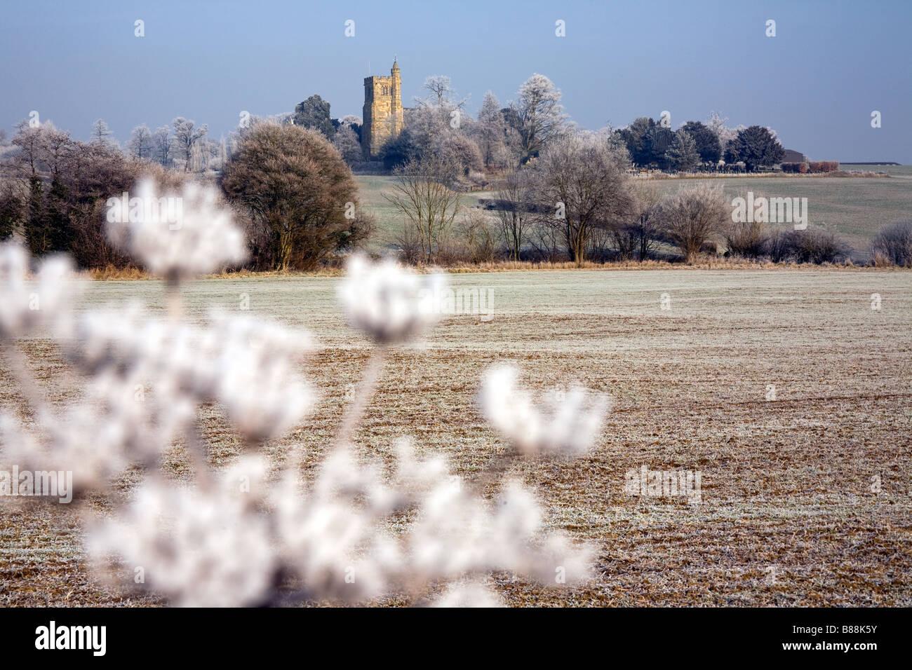 Gefrorene Welt in der Nähe von Goudhurst Kent UK Stockbild