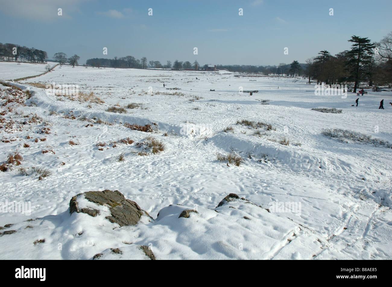 Bradgate Park im Winter, Leicestershire, England, UK Stockfoto