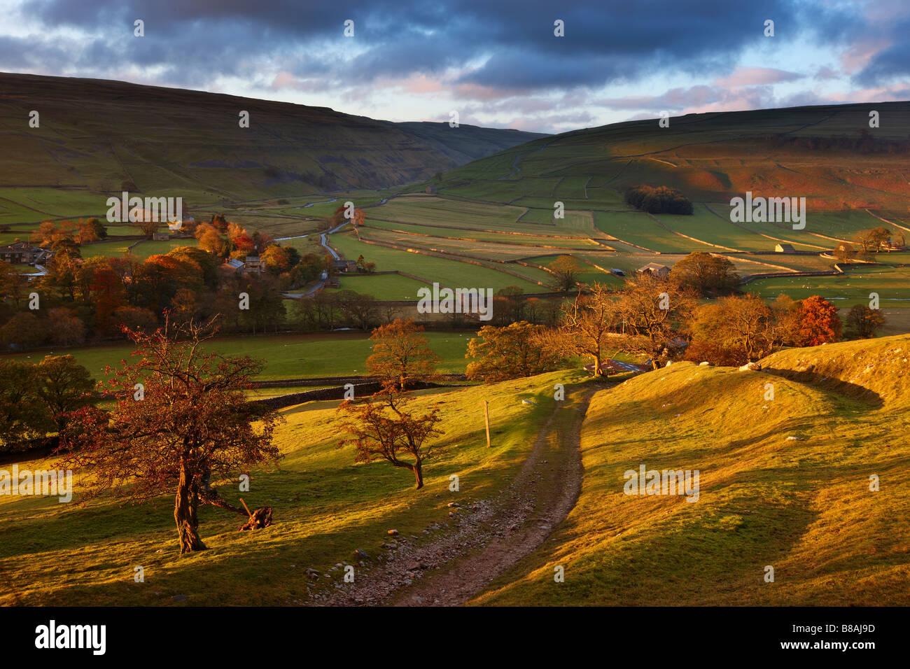 erstes Licht auf die Herbstfarben am Arncliffe in Littondale, Yorkshire Dales National Park, England, UK Stockbild