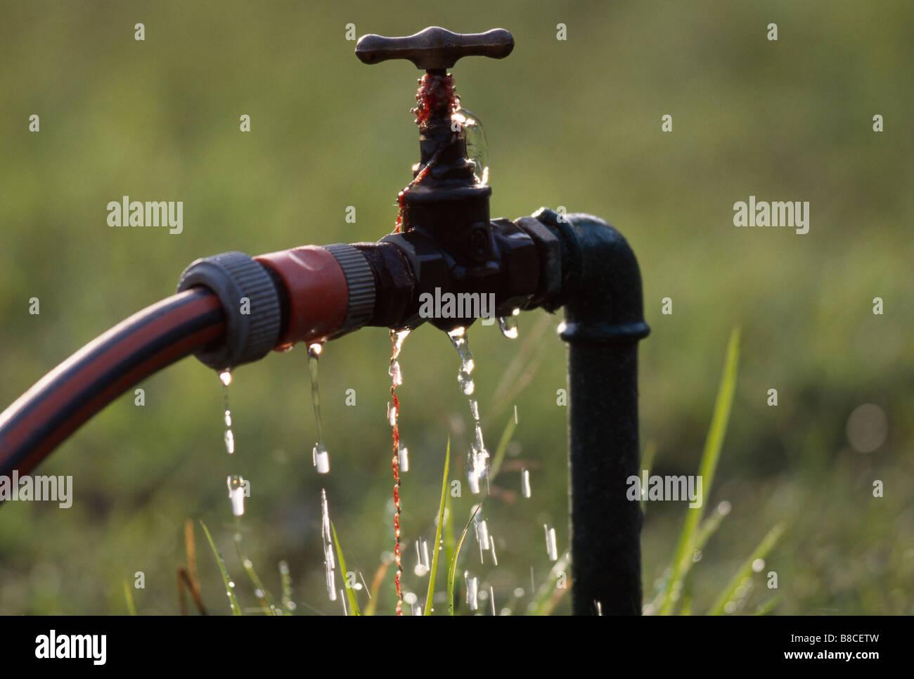 Wasserhahn Undicht Stockfoto Bild 22402713 Alamy