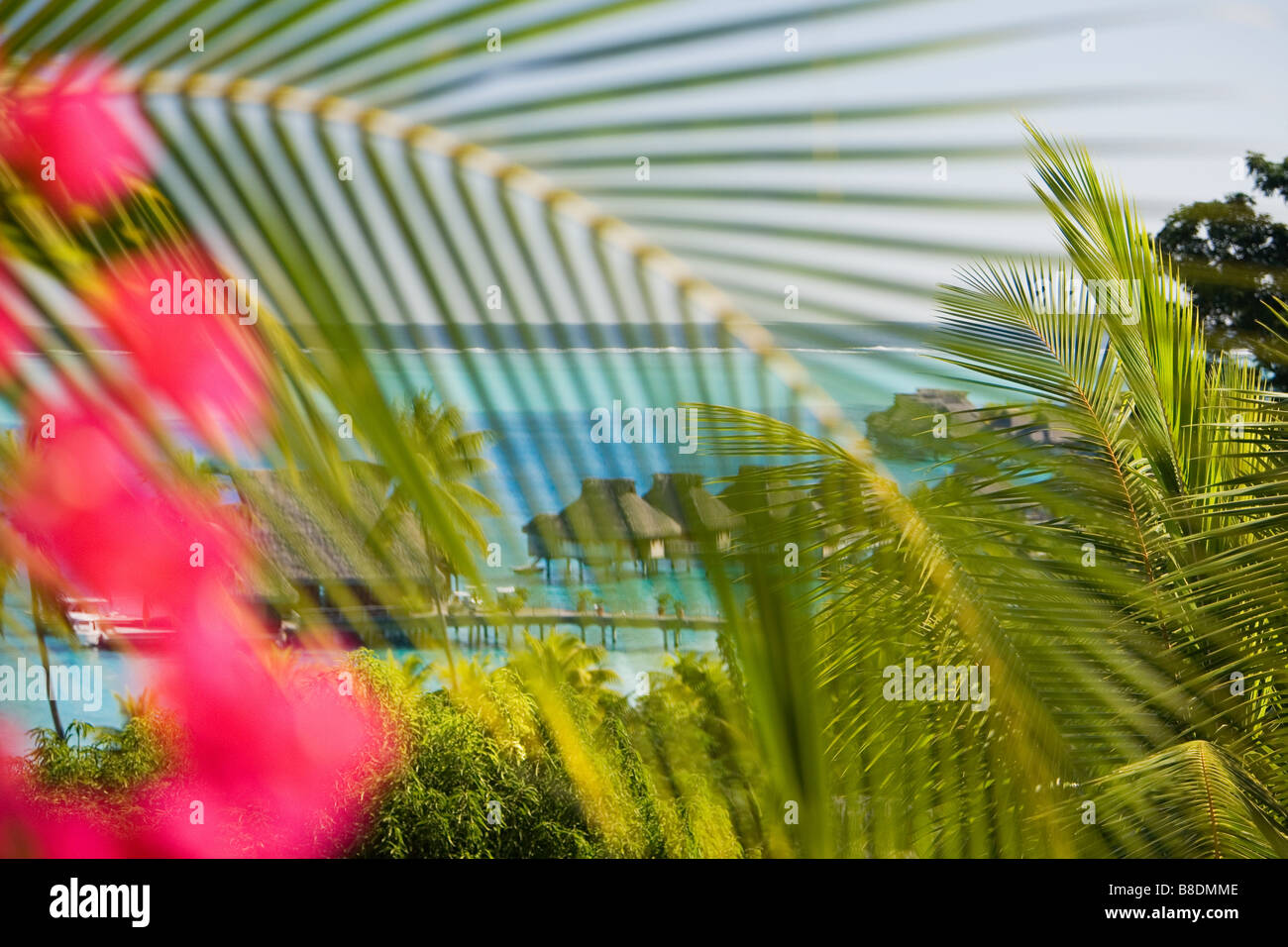 Holiday Resort in Bora bora Stockbild
