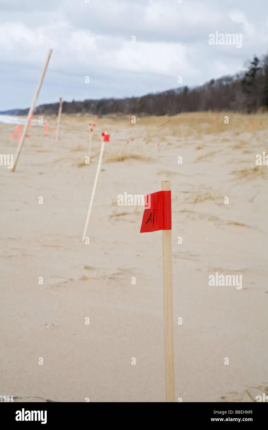 Forscher untersuchen Bewegung von Sanddünen Stockbild