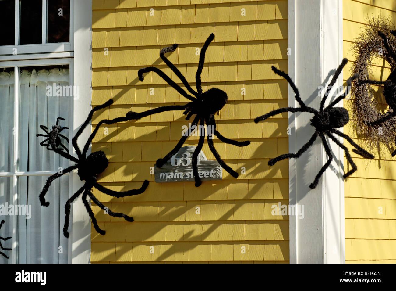 Großen Haarigen Spinnen In Einem Haus Fenster Als Halloween