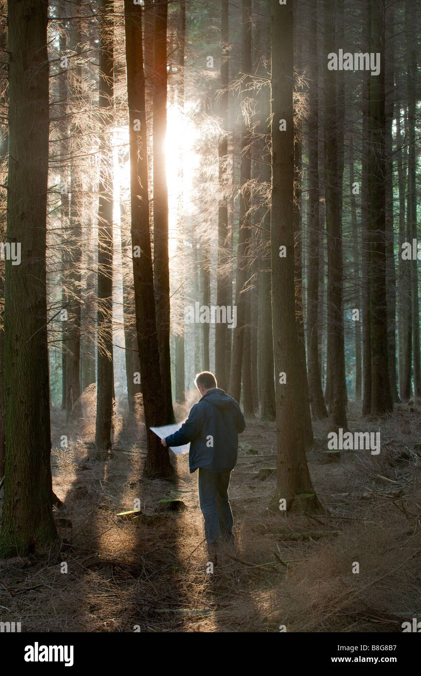 Mann, Blick auf eine Karte im dichten Wald verloren Stockbild