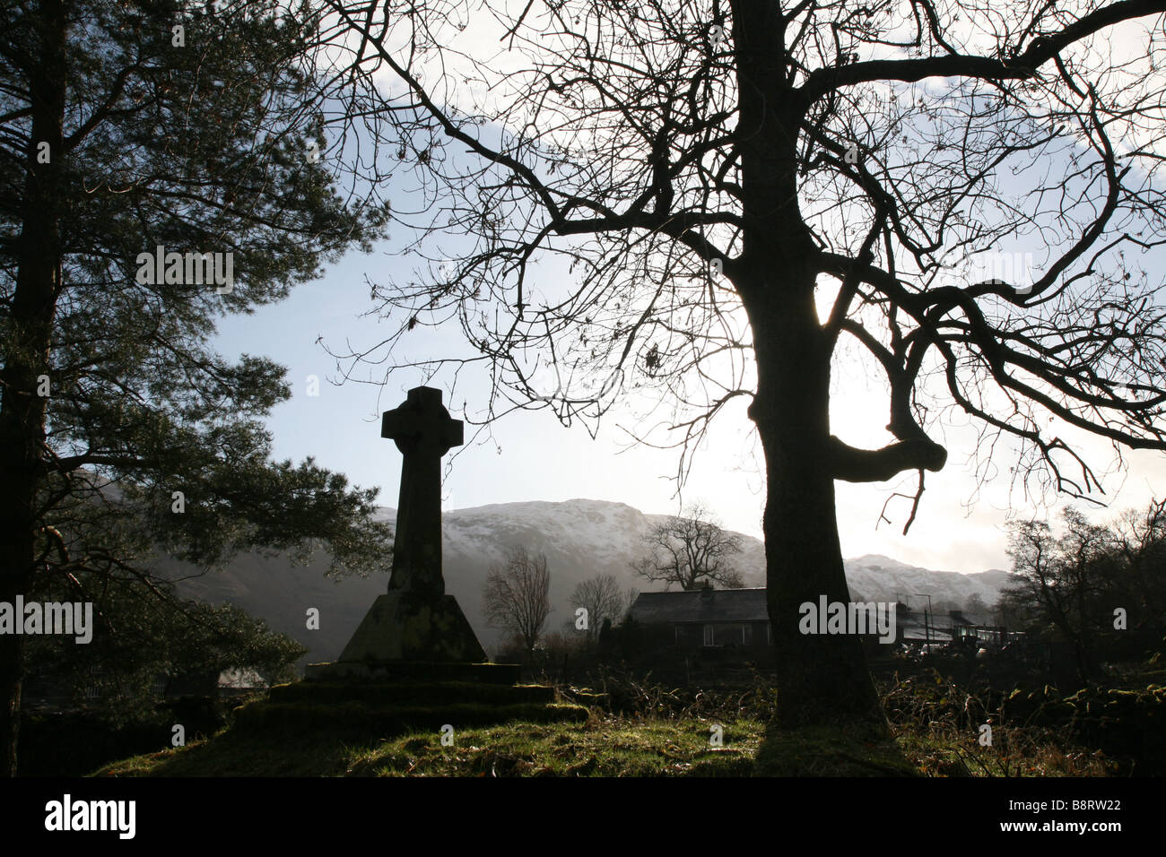 Grabstein und Baum im Morgenlicht Stockbild