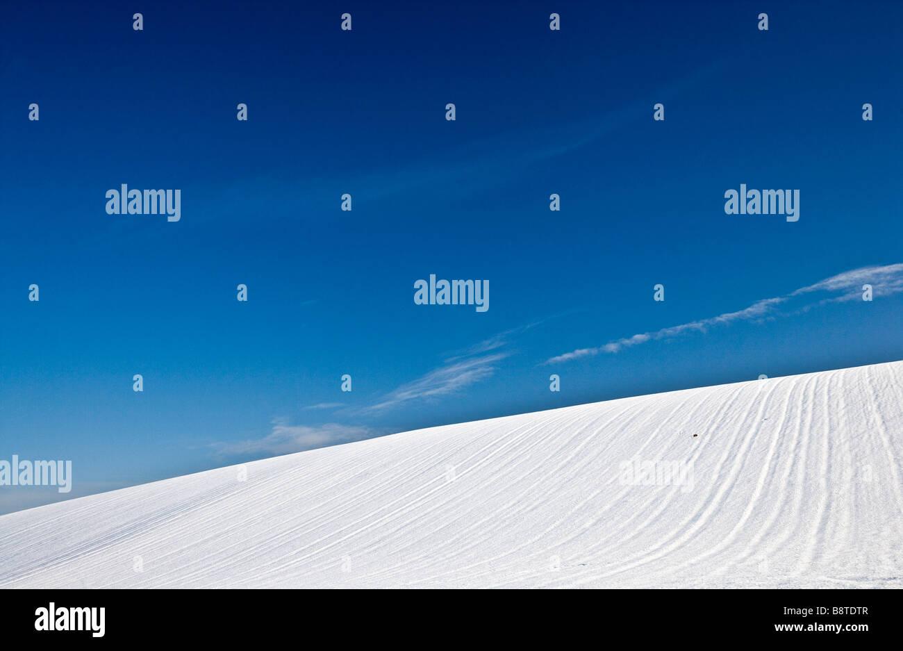 Einen sonnigen verschneiten Winter abstrakten minimalistischen Landschaftsansicht oder eine Filmszene auf den Downs Stockfoto