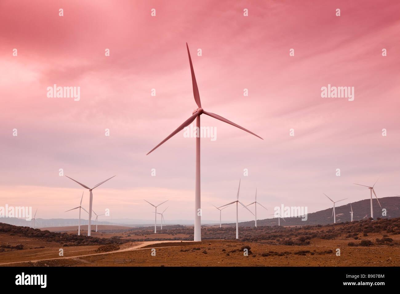 Windpark in der Nähe von Facinas Provinz Cadiz Spanien Stockbild