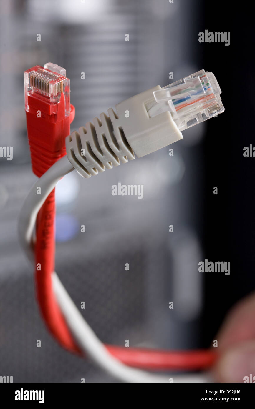Patchkabel, Netzwerk, Kommunikation, Verbindung, Draht, twisted-Pair ...