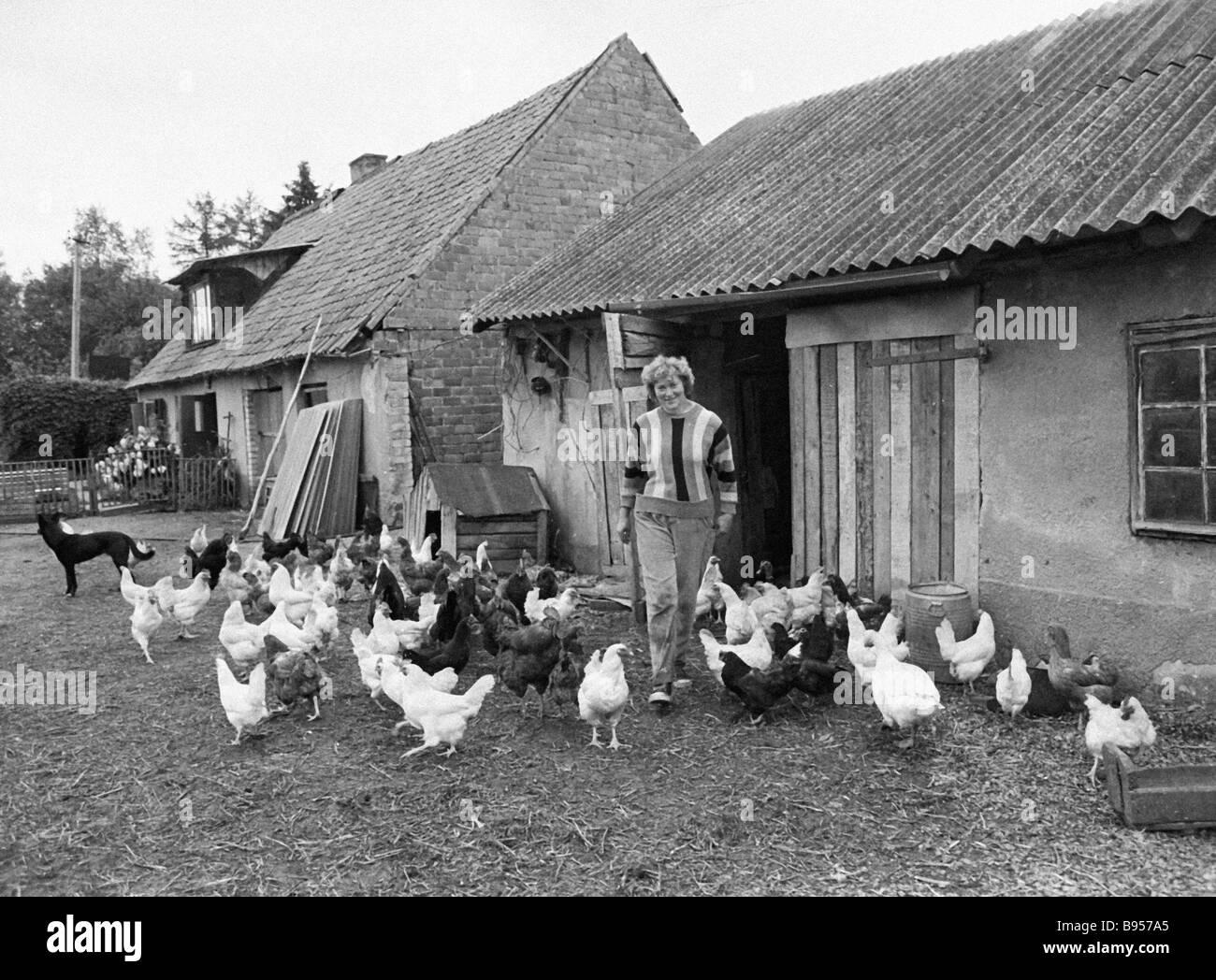Homestead einer estnischen Bauern s Familie Stockbild