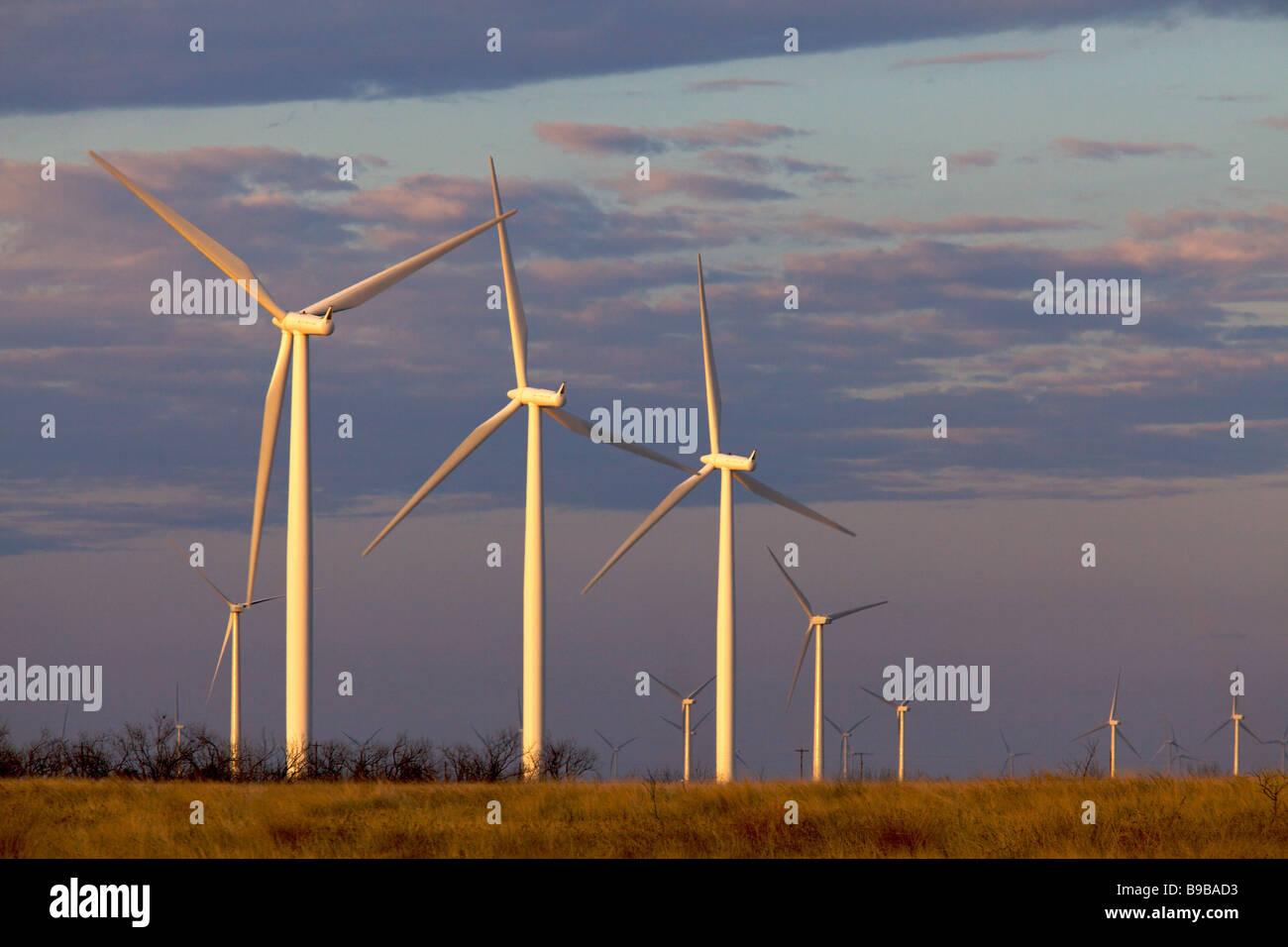 Am frühen Morgen an der Stromerzeugung an Horse Hollow Wind Farm Nolan county Texas Windenergieanlagen Stockbild